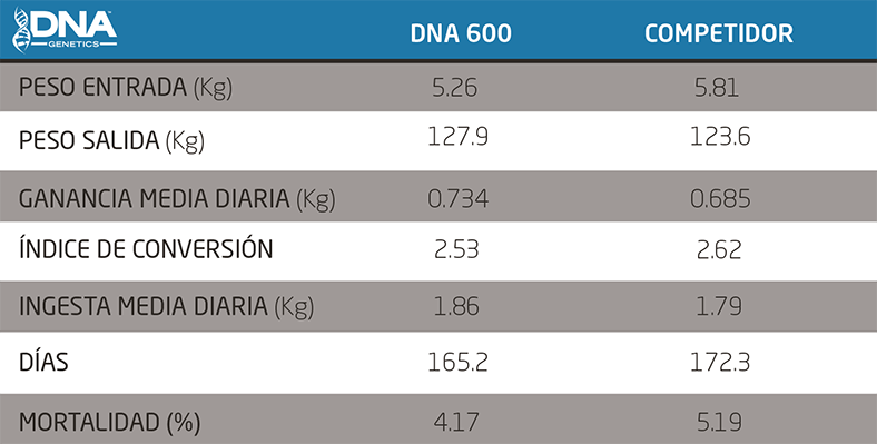 Resultados DNA Genetics